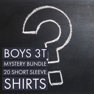 Boys 3T Mystery Bundle 20 Short Sleeve Shirts